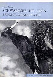 Schwarzspecht, Grünspecht, Grauspecht (A zöld-,fekete-,szürke harkály) 1973 - Régikönyvek