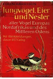 Jungvögel, Eier und Nester - Régikönyvek