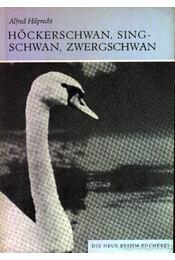 Höckerschwan, Singschwan, Zwergschwan (A bütykös hattyú, az énekes hattyú és a kis hattyú) - Régikönyvek