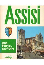 Assisi 180 farbtafeln - Régikönyvek