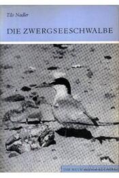 Die Zwergseeschwalbe - Régikönyvek