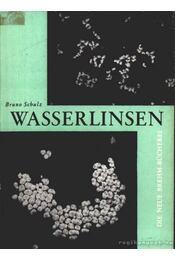 Wasserlinsen - Schulz, Bruno - Régikönyvek
