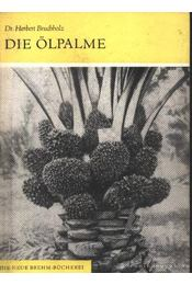 Die Ölpalme (Az olajpálma) - Régikönyvek
