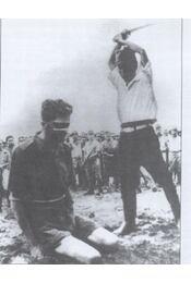 A kínzás és kínvallatás története - Régikönyvek