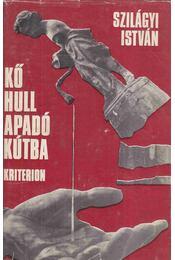 Kő hull apadó kútba - Régikönyvek