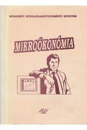 Mikroökonómia - Kopányi Mihály - Régikönyvek