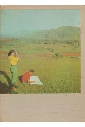Kubában térképeztünk - Régikönyvek