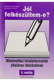 Matematikai feladatsorozatok általános iskolásoknak - 6. osztály - Régikönyvek