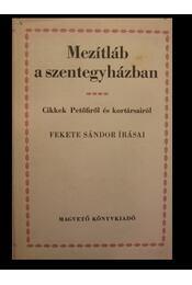 Mezítláb a szentegyházban - Régikönyvek
