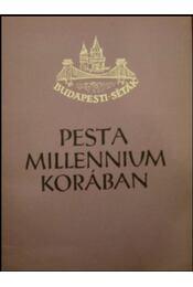Pest a millennium korában - Régikönyvek
