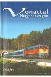 Vonattal Magyarországon - Pálfy Katalin - Régikönyvek
