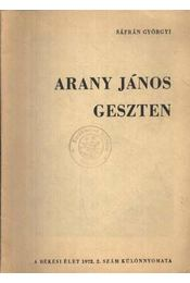 Arany János Geszten - Sáfrán Györgyi - Régikönyvek