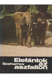 Elefántok az aszfalton - Szaharnov Szvjatoszlav - Régikönyvek
