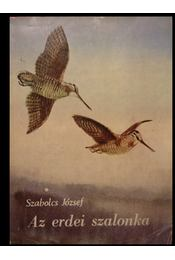 Az erdei szalonka - Régikönyvek