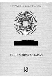 Verses országjárás - Számos nevezetes író - Régikönyvek