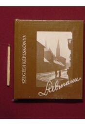 Szegedi képeskönyv (mini) - Régikönyvek