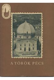 A török Pécs - Régikönyvek