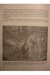 A vadállomány fenntartásának lehetőségei - Régikönyvek