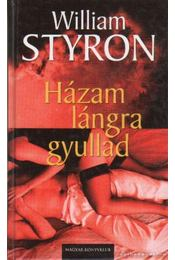 Házam lángra gyullad - William Styron - Régikönyvek